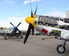 Clear sky with vintage planes with yellow and blue nose